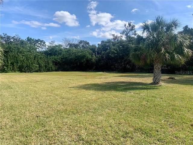 Royal Drive, Tarpon Springs, FL 34689 (MLS #U8101563) :: Young Real Estate
