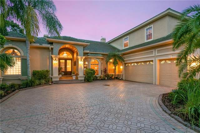 10540 Cory Lake Drive, Tampa, FL 33647 (MLS #U8102286) :: The Heidi Schrock Team