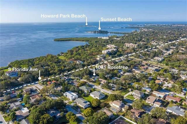 1041 Rosetree Lane, Tarpon Springs, FL 34689 (MLS #U8106004) :: Griffin Group