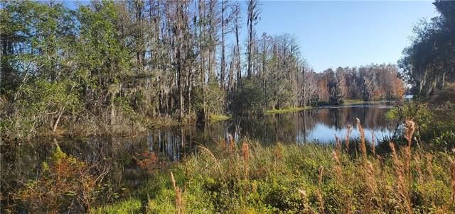 11120 Lake Shore Drive, Land O Lakes, FL 34639 (MLS #U8107614) :: Everlane Realty