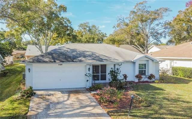 1168 Gillespie Drive N, Palm Harbor, FL 34684 (MLS #U8108899) :: Pepine Realty