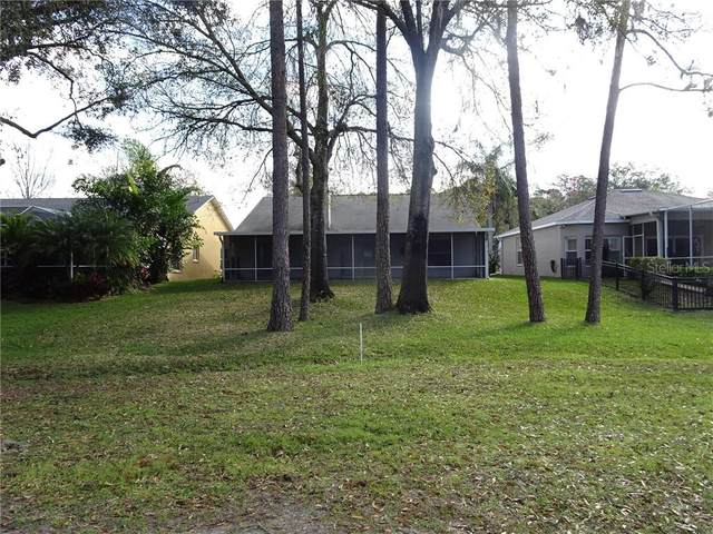 12937 Royal George Avenue, Odessa, FL 33556 (MLS #U8109933) :: Delta Realty, Int'l.