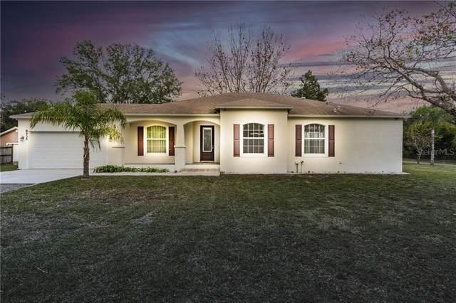 8935 Promise Drive, Tampa, FL 33626 (MLS #U8110551) :: Cartwright Realty
