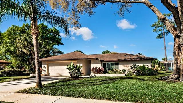 3618 Fairway Forest Circle, Palm Harbor, FL 34685 (MLS #U8115188) :: Carmena and Associates Realty Group