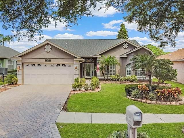 1235 Paradise Lake Drive, Tarpon Springs, FL 34689 (MLS #U8119406) :: Team Borham at Keller Williams Realty