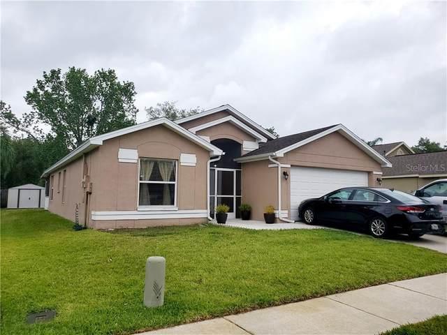 28445 Tall Grass Drive, Wesley Chapel, FL 33543 (MLS #U8120303) :: Delgado Home Team at Keller Williams