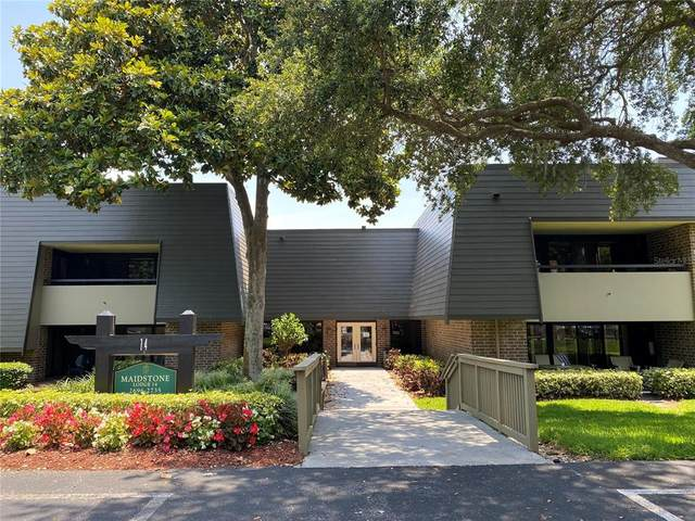 36750 Us Highway 19 N #14205, Palm Harbor, FL 34684 (MLS #U8121639) :: Visionary Properties Inc