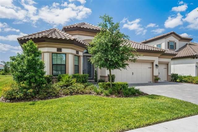 4372 Night Star Trail, Odessa, FL 33556 (MLS #U8121674) :: Premier Home Experts