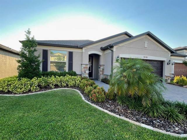 18780 Birchwood Groves Drive, Lutz, FL 33558 (MLS #U8122055) :: Team Borham at Keller Williams Realty