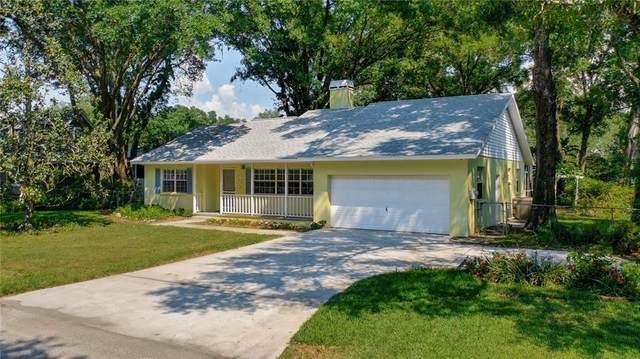 3920 Seixas Place, Land O Lakes, FL 34639 (MLS #U8122284) :: Team Borham at Keller Williams Realty