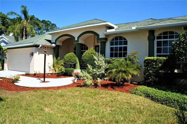 11448 Marsh Creek Court, New Port Richey, FL 34654 (MLS #U8122375) :: Team Borham at Keller Williams Realty