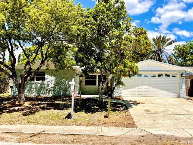9224 Crabtree Lane, Port Richey, FL 34668 (MLS #U8123513) :: Team Borham at Keller Williams Realty