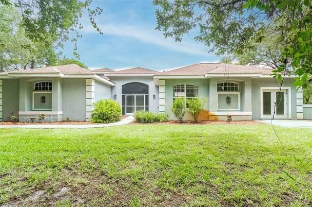 10809 Osceola Drive, New Port Richey, FL 34654 (MLS #U8124050) :: Sarasota Gulf Coast Realtors
