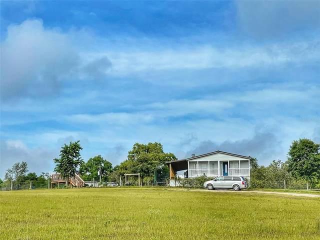 19551 Old Trilby Road, Dade City, FL 33523 (MLS #U8125566) :: Zarghami Group