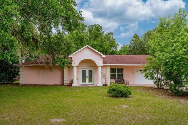 11802 Weaver Lane, Thonotosassa, FL 33592 (MLS #U8125684) :: Everlane Realty