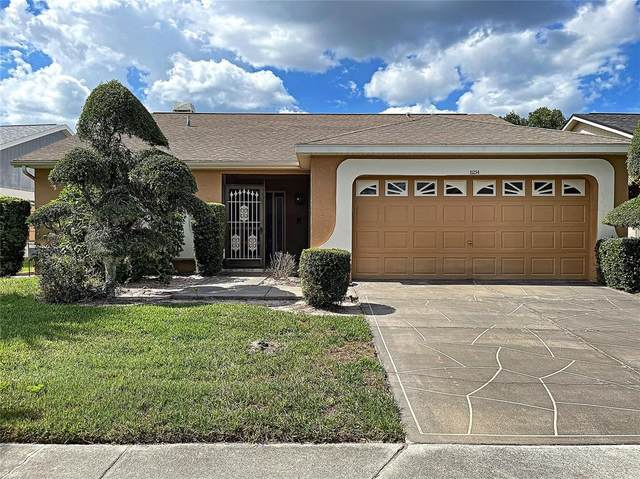 11214 Villas On The Green Drive #82, Riverview, FL 33579 (MLS #U8125992) :: Everlane Realty