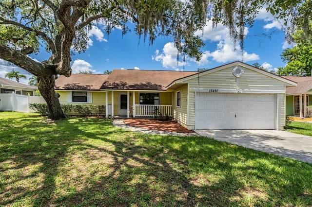 15491 Arvin Drive, Brooksville, FL 34604 (MLS #U8126077) :: RE/MAX LEGACY