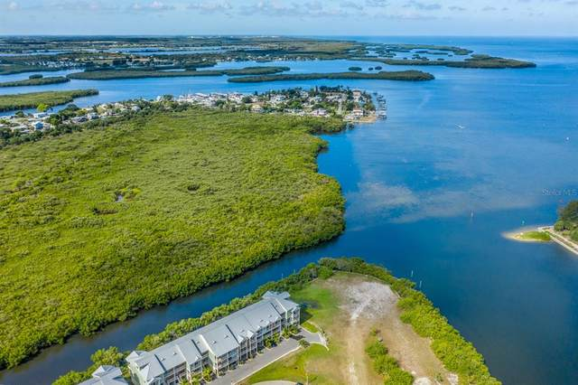 3282 Mangrove Point Drive, Ruskin, FL 33570 (MLS #U8126336) :: Frankenstein Home Team