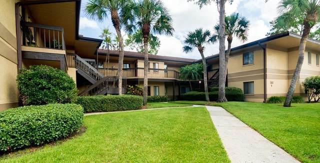 2683 Sabal Springs Circle #202, Clearwater, FL 33761 (MLS #U8127674) :: Medway Realty