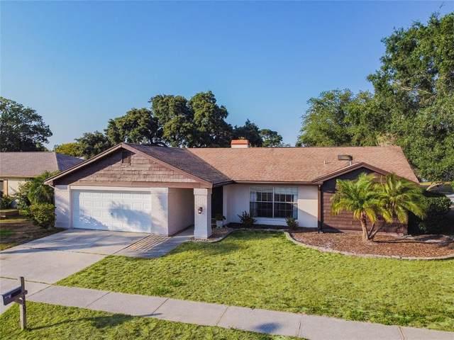 9903 Zaharias Court, New Port Richey, FL 34655 (MLS #U8128051) :: Griffin Group