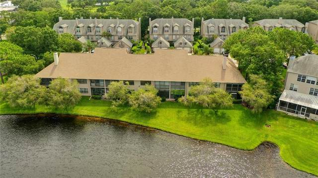 2806 Countryside Boulevard #525, Clearwater, FL 33761 (MLS #U8129614) :: Medway Realty