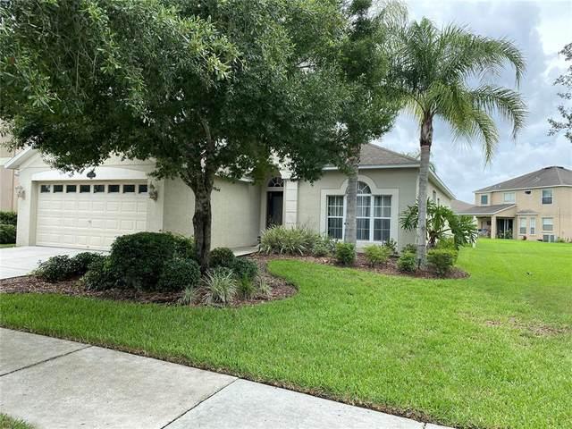 11053 Ancient Futures Drive, Tampa, FL 33647 (MLS #U8129631) :: Vacasa Real Estate