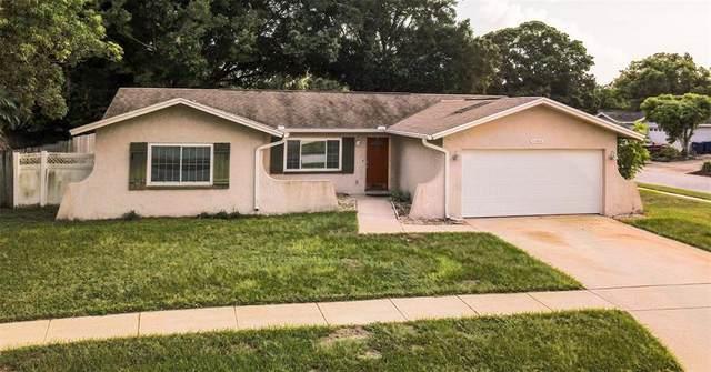 11886 94TH Avenue, Seminole, FL 33772 (MLS #U8130250) :: Zarghami Group