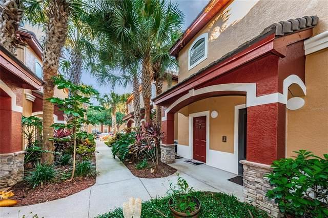 2220 Chianti Place #815, Palm Harbor, FL 34683 (MLS #U8131711) :: Heckler Realty