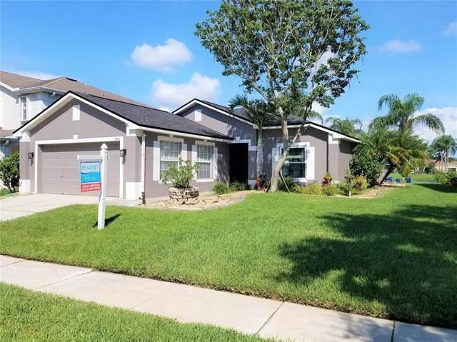 8516 Tidal Bay Lane, Tampa, FL 33635 (MLS #U8132028) :: GO Realty