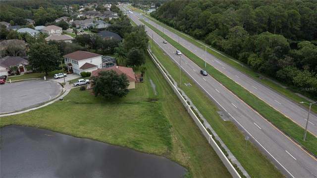 Pinewood Drive, Oldsmar, FL 34677 (MLS #U8132625) :: Gate Arty & the Group - Keller Williams Realty Smart