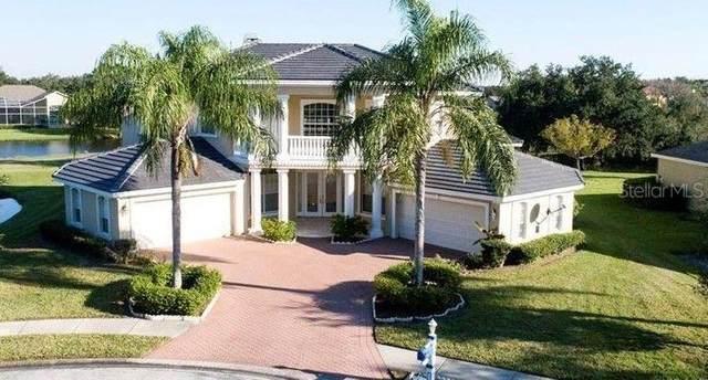 19133 Harborbridge Lane, Lutz, FL 33558 (MLS #U8133161) :: Zarghami Group