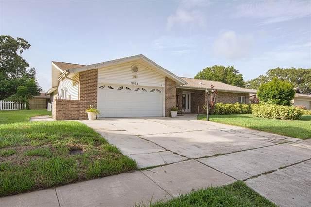 2675 Firestone Drive, Clearwater, FL 33761 (MLS #U8135465) :: Zarghami Group