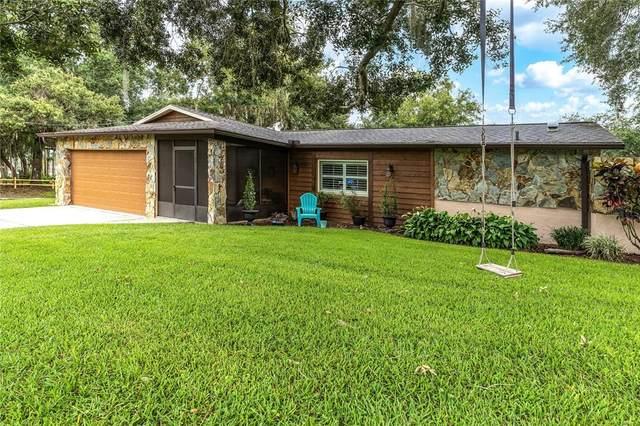 16202 Armistead Lane, Odessa, FL 33556 (MLS #U8135965) :: Zarghami Group