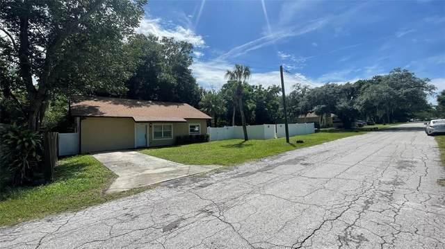 6600 Florida Avenue, New Port Richey, FL 34653 (MLS #U8136098) :: The Curlings Group
