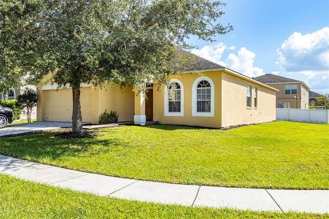 30528 Latourette Drive, Wesley Chapel, FL 33545 (MLS #U8136413) :: Everlane Realty