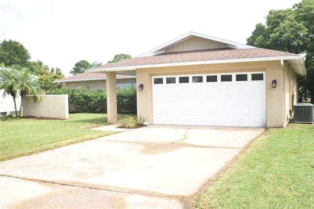 4527 Mitcher Road, New Port Richey, FL 34652 (MLS #U8136629) :: Zarghami Group