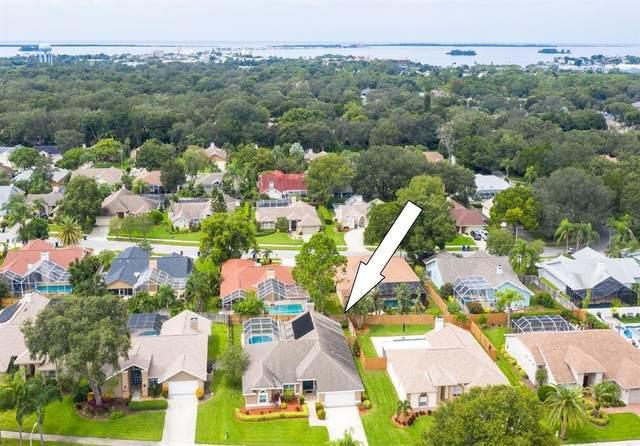 2782 Scobee Drive, Palm Harbor, FL 34683 (MLS #U8137603) :: Zarghami Group