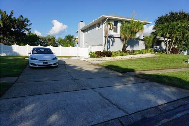 697 Tallahassee Drive NE, St Petersburg, FL 33702 (MLS #U8137748) :: Cartwright Realty