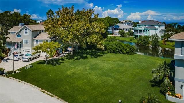 Sandpiper Pointe Court, Tarpon Springs, FL 34689 (MLS #U8137987) :: Delgado Home Team at Keller Williams