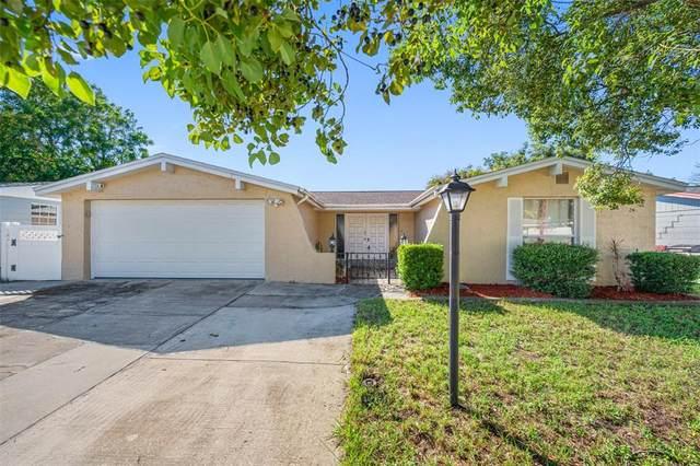 9035 Prosperity Lane, Port Richey, FL 34668 (MLS #U8138592) :: Griffin Group