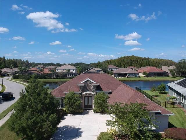 15114 Wind Whisper Drive, Odessa, FL 33556 (MLS #U8138769) :: Cartwright Realty