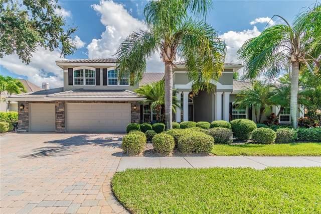 10215 Golden Eagle Drive, Largo, FL 33778 (MLS #U8139145) :: Keller Williams Realty Select