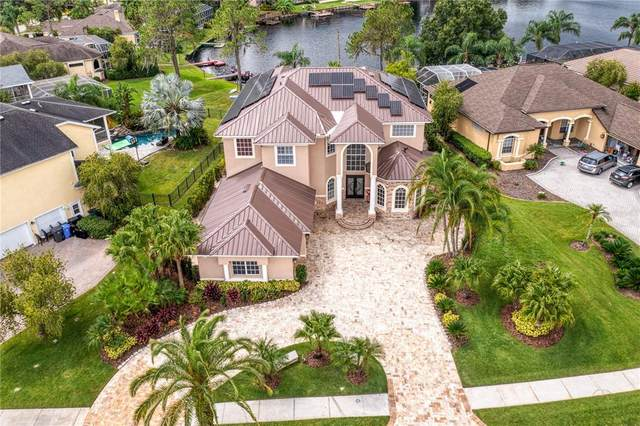 17804 Saint Lucia Isle Drive, Tampa, FL 33647 (MLS #U8139430) :: Bustamante Real Estate