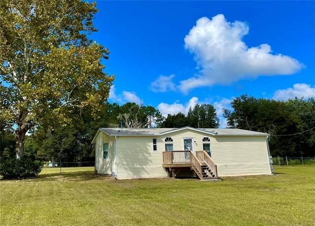 12445 Kent Grove Drive, Spring Hill, FL 34610 (MLS #U8140074) :: Charles Rutenberg Realty