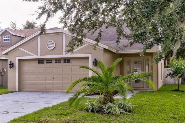 1745 Horsechestnut Court, Trinity, FL 34655 (MLS #U8140907) :: RE/MAX Marketing Specialists