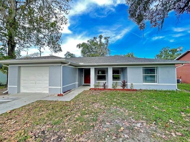 38631 Patti Lane, Dade City, FL 33523 (MLS #U8141054) :: Century 21 Professional Group