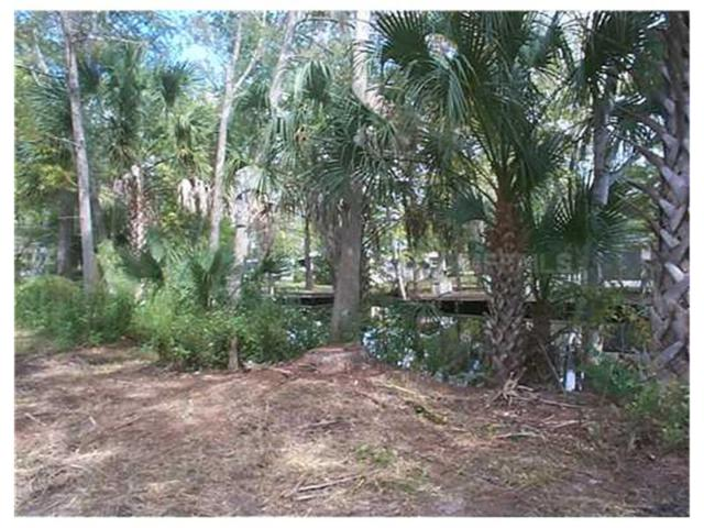 Cherry Tree Road, Astor, FL 32102 (MLS #V4634615) :: The Duncan Duo Team