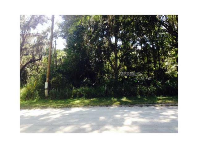 216 Centerwood Road, Florahome, FL 32140 (MLS #V4647511) :: The Duncan Duo Team