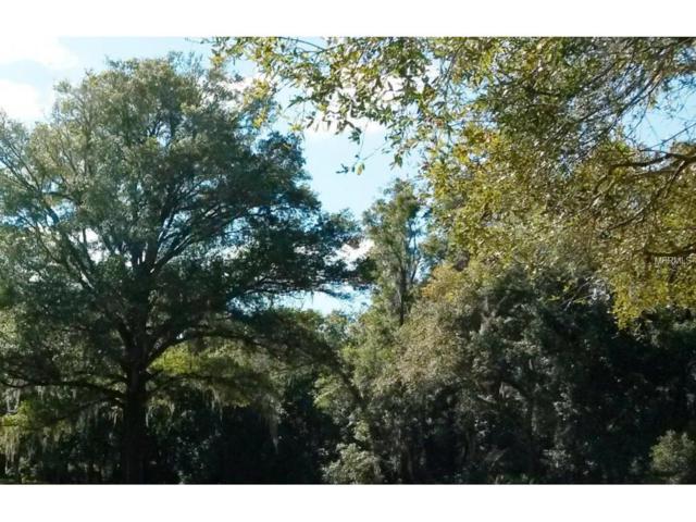 17 E Orange Street, Avon Park, FL 33825 (MLS #V4703847) :: The Duncan Duo Team