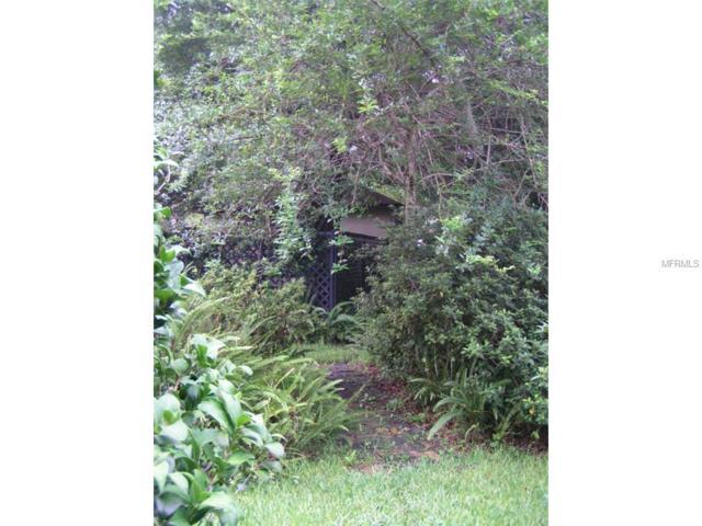 147 E Orange Street, Avon Park, FL 33825 (MLS #V4703848) :: The Duncan Duo Team